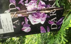 And I Darken Raises the Stakes in Historical Fiction